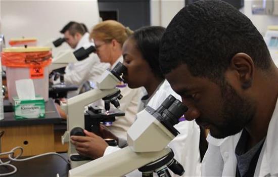 Medical Lab Science